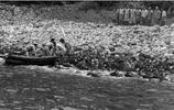 """實拍二戰""""原始人"""",不知日本投降,6年後看到軍兵豎起了白旗"""