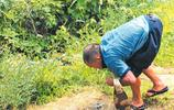 50歲殘疾男子養大一個醫生和工程師,但倆兒子卻嫌棄他讓他住農村