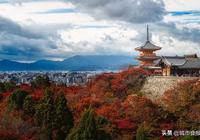 去京都,為你搜羅京都16家餐廳,你會為了吃而買單嗎?