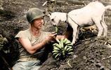 殘酷的二戰除了硝煙,還有這些另類搞笑的鏡頭!
