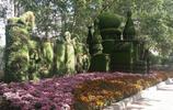 哈爾濱有一座草做的小教堂,堪稱哈爾濱一絕,下面的花朵也很美