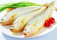 大黃魚怎麼做好吃又簡單 大黃魚的做法大全