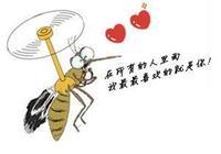 蚊子是怎麼找到我們的?