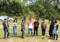 太湖縣彌陀鎮科學規劃生態農業特色發展