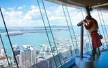 南半球最高的建築,奧克蘭風采