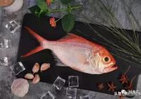 這種魚居於深海約800米,為什麼那麼多人喜歡吃它,原來有6大益處