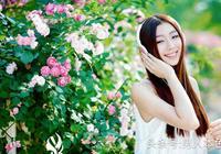 清心的薔薇,清馨的詩