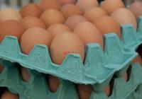 雞蛋和此物一起炒,大腦靈活,血管幹淨了,肝也越來越健康