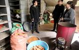 河南農村夫妻家裡放滿五顏六色的臉盆,養20萬隻小生物年賺10多萬