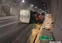 遵義:3噸玉米壓斷輪胎螺絲,小貨車隧道內側翻, 你怎麼看?