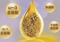 亞麻籽油的功效與作用