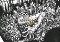 《輻射76》阿帕拉契亞神祕生物調查報告——輻屍生物