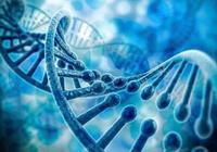 人為什麼會患癌?是基因問題還是外源性因素?