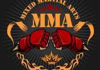 風靡全世界的綜合格鬥MMA(mixed martial arts)的介紹