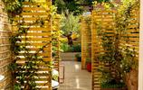 將木材用到極致的庭院是一種怎樣的效果