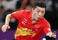 國乒首冠誕生!許昕3-0吊打張本智和奪冠,劉國樑奧運計劃終收效