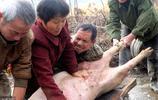 63歲鄉間夫妻殺豬匠,配合默契最多一天能殺10多頭豬,現在最忙碌