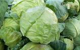 """吃藥30年,不如吃菜30天,幾種綠葉蔬菜稱作""""救命菜"""",多吃點"""