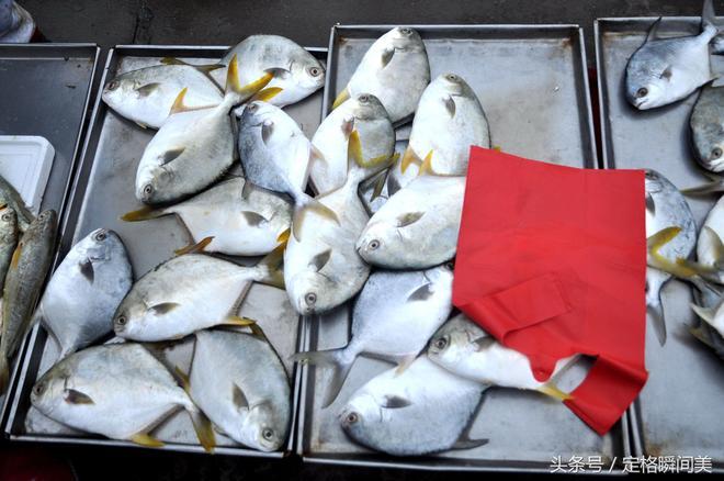 """早市梭子蟹""""跳水價""""10塊錢一斤 大媽三招教會你挑肥撿肉並不難"""