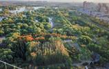 北京:航拍昌平濱河森林公園