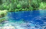 在這個童話世界裡用盡所有的詞語來描寫水的色彩都不為過