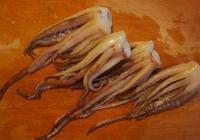 別人拿火鍋底料煮火鍋吃,我拿火鍋底料做香辣魷魚須