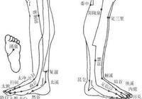 小腿腫脹可能是一些嚴重疾病的信號:腎病、深靜脈血栓、心臟病、甲狀腺疾病。應該如何預防腿腫呢?
