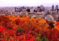 加拿大:金秋賞楓蒙特利爾