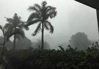 熬過了橫風橫雨的中午,週末的天氣將……