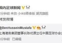 上港集團董事長陳戌源或將出任新一屆足協主席一職,你怎麼看?
