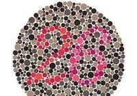 色盲測試:如果有一張認不出來,就說明是色盲,天生不適合開車