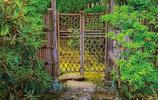 厭煩城市氣息,不如看看日式園林設計
