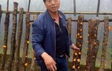 """不用出村年掙100萬,陝西農民靠山吃山,讓1.5根木頭開出""""黃花"""""""