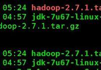 安裝Hadoop的偽分佈式