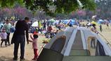 這個免費開放的植物園,成了東莞人最愛賞花的網紅打卡地
