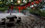 2000多年古村辦婚禮,一種只有當天早上才能吃到的美食,看看是啥