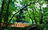 攝影圖集:天台山 國清寺