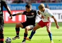 德甲前瞻:勒沃庫森VS科隆 退無可退的萊茵河德比戰