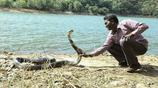 男子在河邊調戲眼鏡王蛇,結果村裡的人都低下了頭