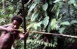 熱帶雨林,食人族的日常生活