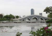 銀川海寶公園的大黃鴨