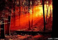 一聲梧葉一聲秋,一點芭蕉一點愁,三更歸夢三更後——讀詩誦詞