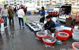 深秋逛青島早市 海螺16元一斤 買海鮮不能只聽價格更要比質量
