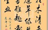 中書協女書法家蘇澤立行書,阿娜多姿,賞心悅目,你覺得美嗎?