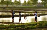 農家孩子早當家,孩子是這樣度過週末,知道他們在做什麼嗎?