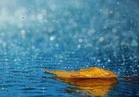 【攝影】拍出雨天的唯美意境