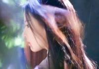 你認為劉亦菲和李若彤的小龍女,哪版更符合《神鵰俠侶》原著?為什麼?