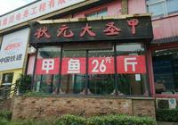 武漢哪家甲魚館的甲魚最好吃?
