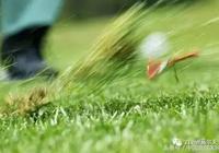 經常打高爾夫球的十大益處