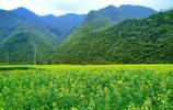八百里秦川,秦嶺是隱居者的天堂